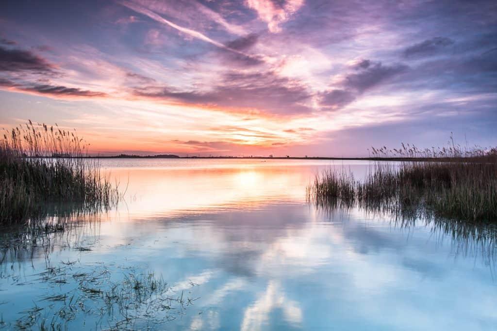 Morgenstimmung am Neusiedler See