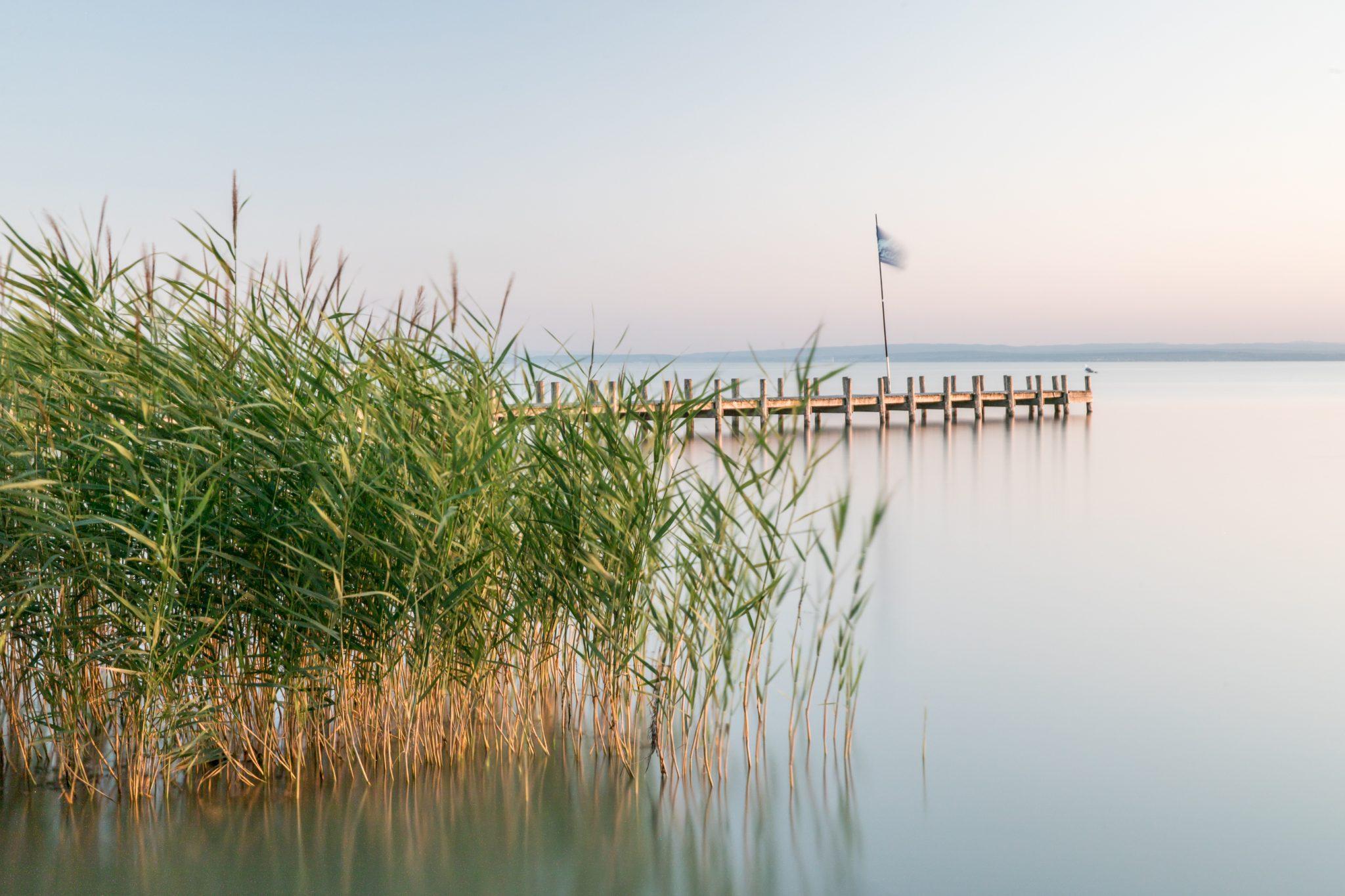 Ferien bei Hofmeister, Urlaub, Ferien, Neusiedler See, Podersdorf, Burgenland, Ferienwohnung, Gästezimmer, Pension